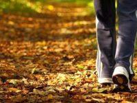 Sonbahar Aylarında Sağlıklı Kalabilmek için Nelere Dikkat Etmek Gerekiyor